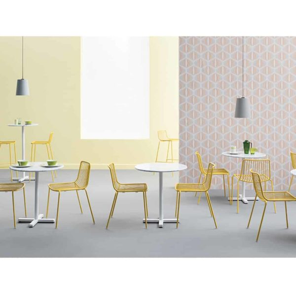 Bold Table Base Pedrali DeFrae Contract Furniture With Nolita Chairs