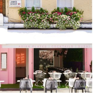 Bruce Outside Side Chairs at Cocochan London by DeFrae Contract Furniture