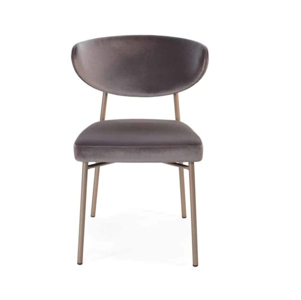 Albie side chair with brass frame DeFrae Contract Furniture Ivy Side Chair Laco Hero