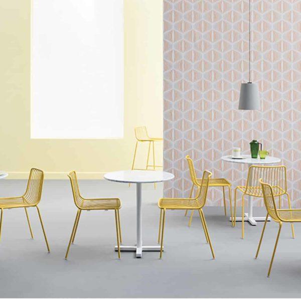 Nolita side chair 3650 Pedrali at DeFrae Contract Furniture Mustard In Situ